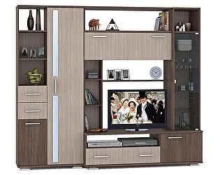 Купить гостиную Mobi Стенка Дарси 1 +Шкаф-стеллаж
