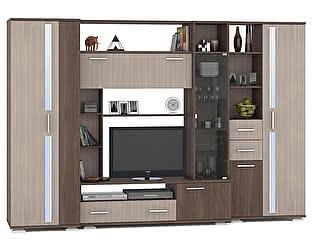 Купить гостиную Mobi Стенка Дарси 1 Шкаф для одежды+Шкаф-стеллаж