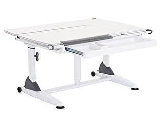 Купить стол TCT Nanotec Эргономик G6+S (парта)