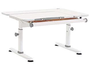 Купить стол TCT Nanotec M6+XS New (парта)