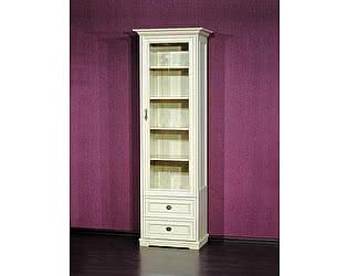 Купить шкаф Юта Рим-73 книжный