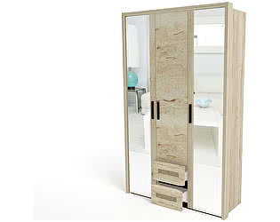 Купить шкаф СБК Мале 3-х дверный