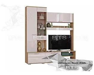 Купить гостиную BTS Флай ЦС-01