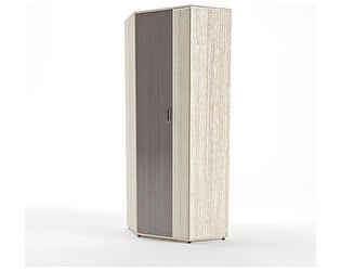 Купить шкаф SV-мебель угловой Визит-1