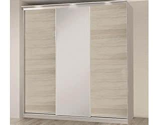 Купить шкаф Боровичи-мебель купе 3-дверный (2100х458)