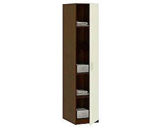Купить шкаф Боровичи-мебель многоцелевой  Дуэт, арт. 16.22