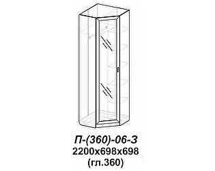 Купить шкаф Santan Элит-П-(360)-06-З