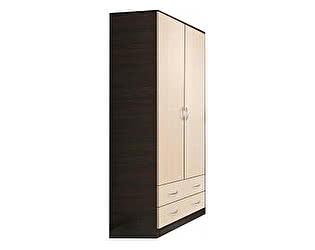 Купить шкаф Диал Шкаф 2-х дверный Кэт-7