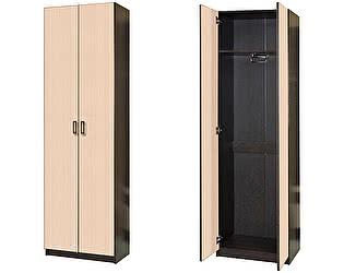 Купить шкаф Диал Шкаф 2-х дверный Иннэс-2 (ЛДСП)