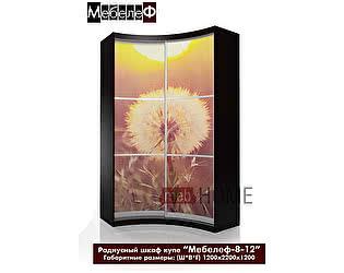 Купить шкаф Мебелеф Мебелеф-8 с фотопечатью