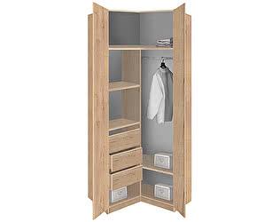 Купить шкаф Боровичи-мебель Лофт угловой 19.18