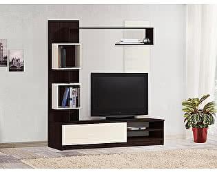 Купить гостиную Боровичи-мебель СОЛО 8