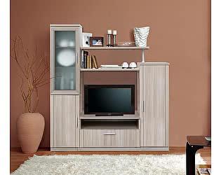 Купить гостиную Боровичи-мебель СОЛО 2