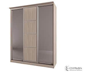 Купить шкаф Сильва НМ 013.60-01 2Z