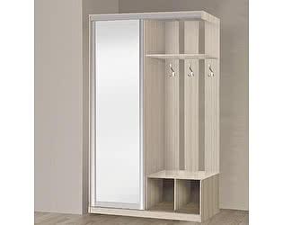 Купить прихожую Боровичи-мебель 1-дверная прихожая-купе