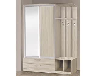 Купить прихожую Боровичи-мебель 2-х дверная прихожая-купе