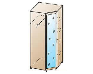 Купить шкаф Лером ШК-813
