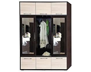 Купить шкаф Союз-Мебель Ника 2