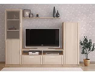 Купить гостиную Боровичи-мебель Стенка СОЛО 4
