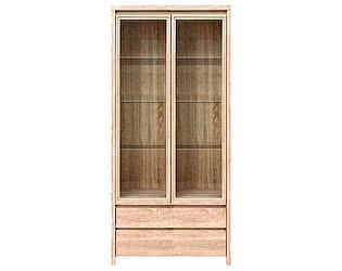 Купить шкаф BRW Каспиан REG 2W2S